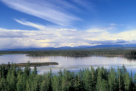 View along the Tanana River, Alaska Highway, Alaska