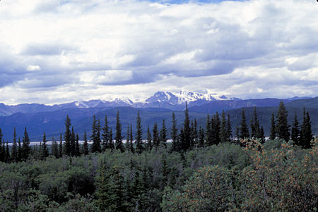 View from Icefield Ranges viewpoint, Kluane National Park, Yukon Territory
