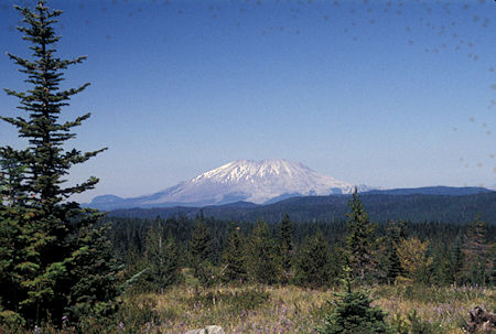 Mount St. Helens from USFS Road 24, Washington