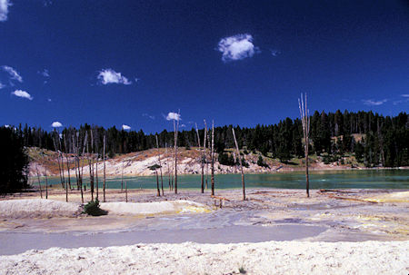 Sour Lake, Mud Volcano area, Yellowstone National Park